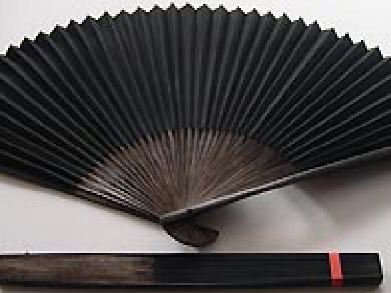 30cm Polished Black Fan