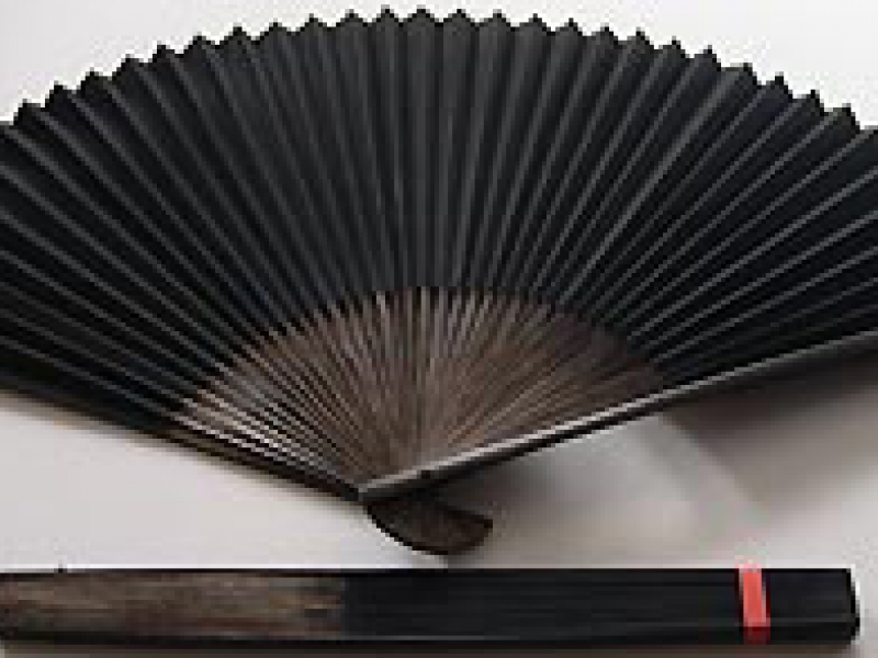 30cm Polished Black Fan